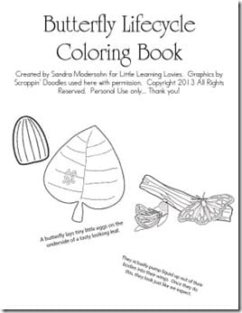 Butterfly-Life-Cycle-Coloring-Book