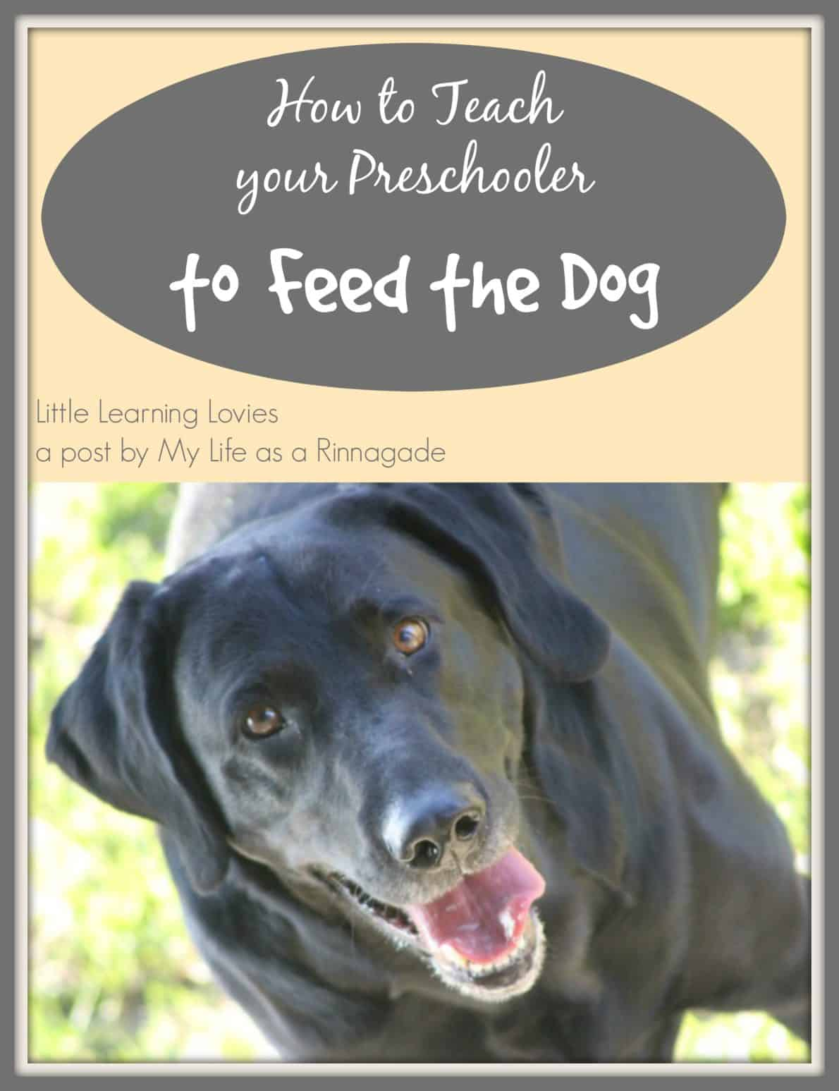 How to Teach Your Preschooler to feed the dog