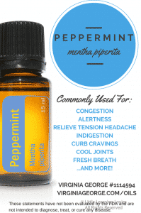 Peppermint-Uses-682x1024