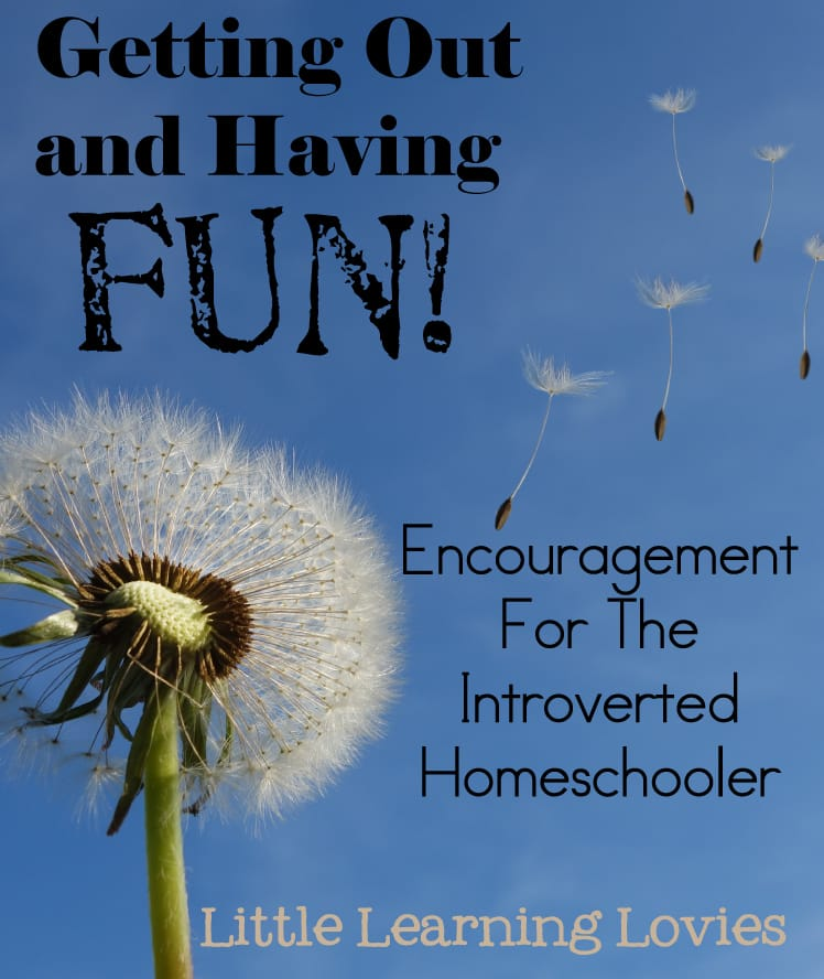 Getting Out And Having Fun... Encouragement for Introverted Homeschoolers